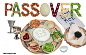 passover2011tradition
